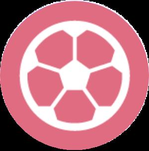 レクリエーション活動icon